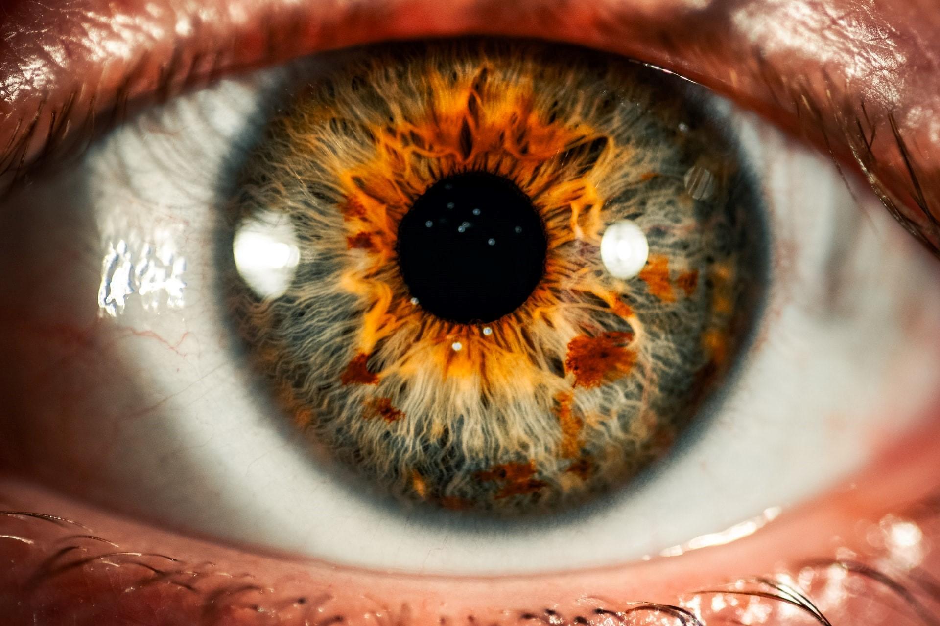 Wir haben Ihre Iris im Blick.