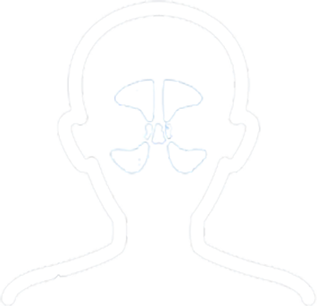 Outline of person nasal passages