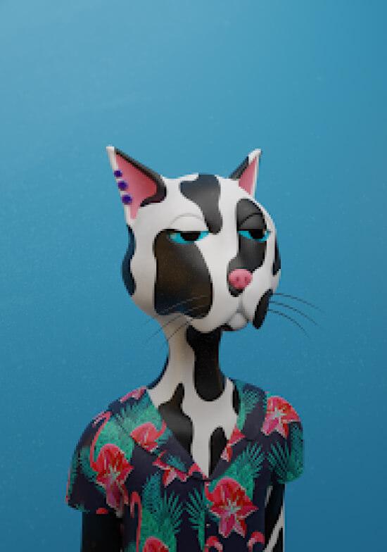 Cat 06