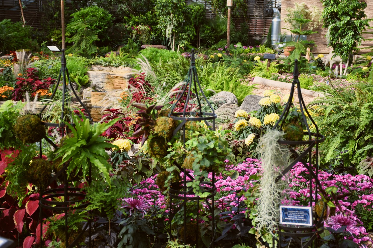 fall floral show