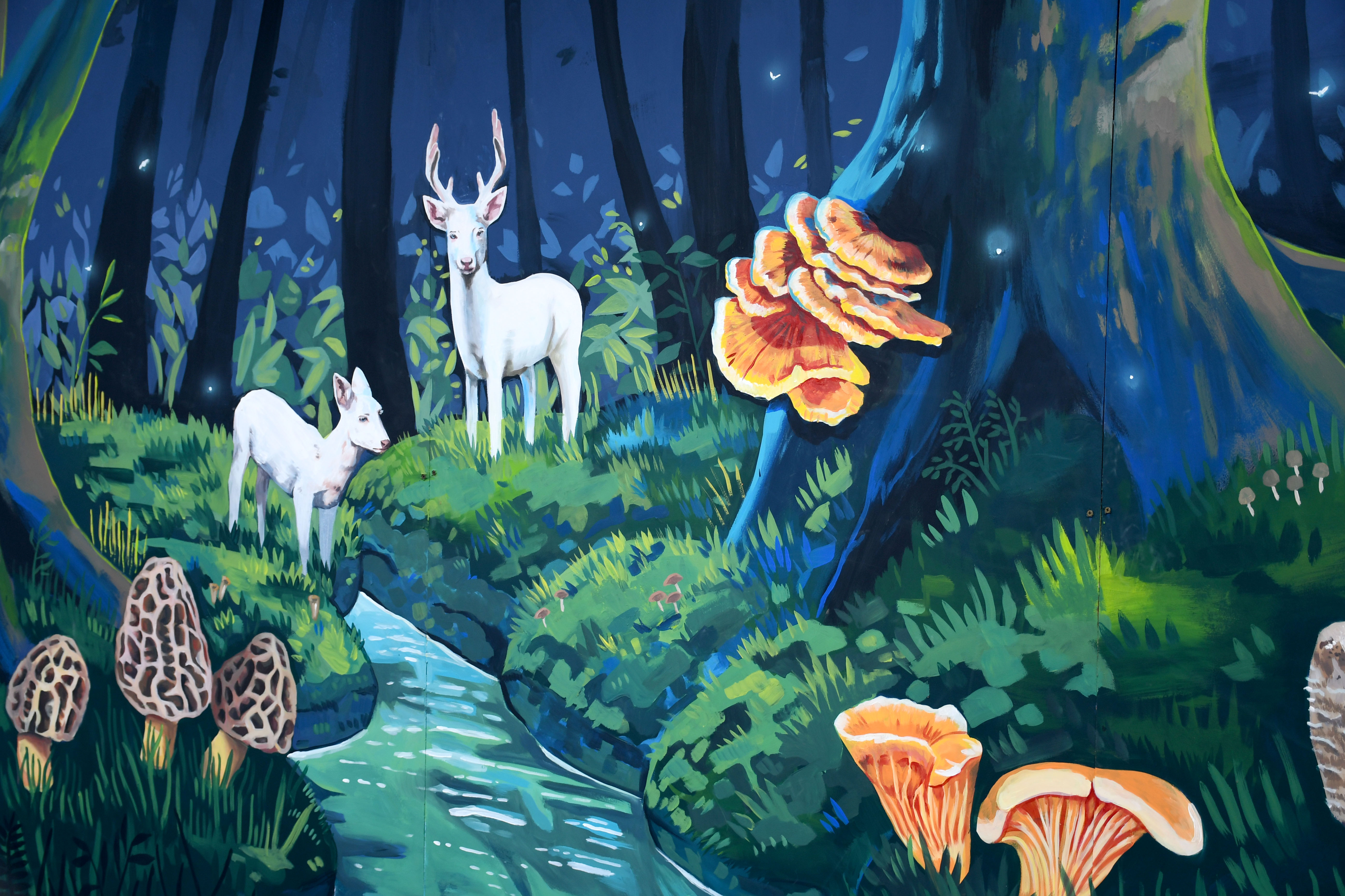 Fall Show Fungi Mural