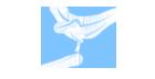 Logo do parceiro Colibri