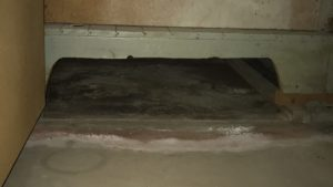 mold in vents