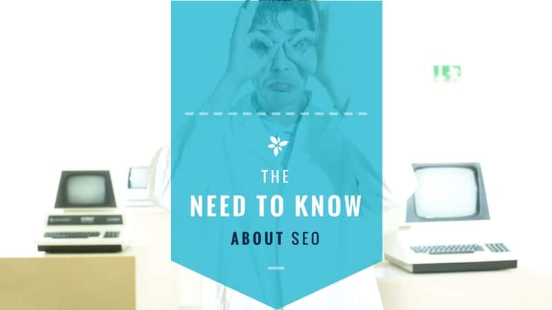 The need-to-know about SEO