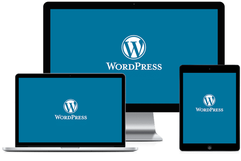 What is Wordpress / a Content Management System?
