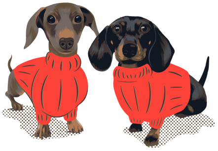 illustration of two dachshunds in red orange sweaters, moonpie starbox celebrity dogs