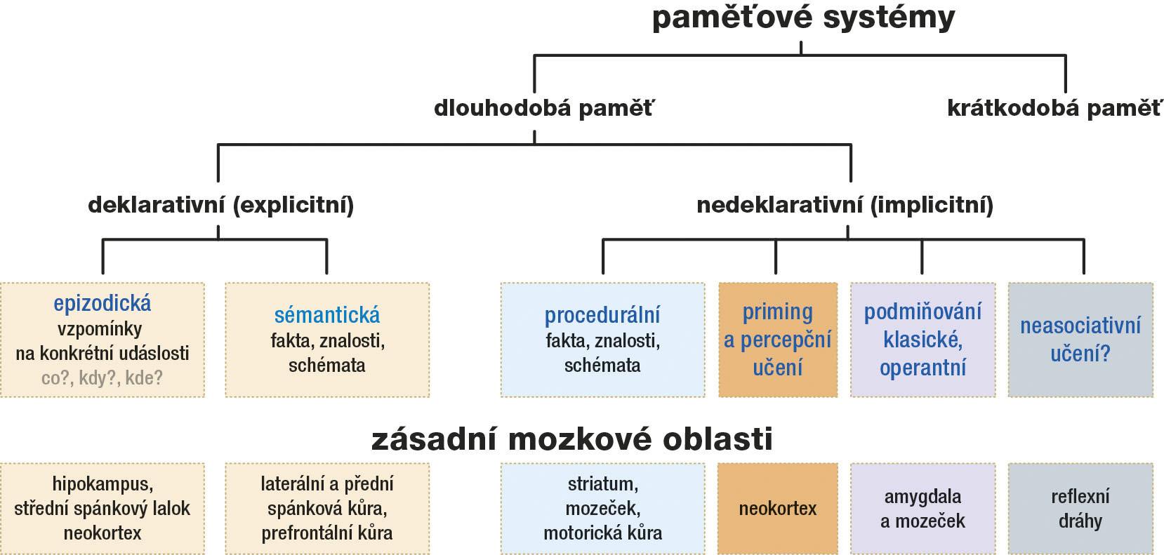 Paměťové systémy