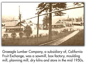 Graeagle Lumber Company