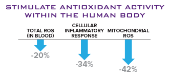 Stimulate antioxidant activity within the human body