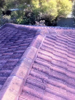 Roof re-bed