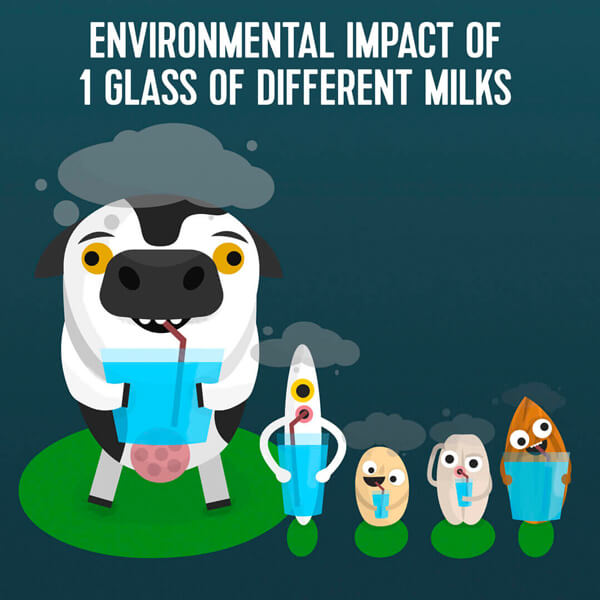 Environmental impact of one glass (200 ml) of different milks
