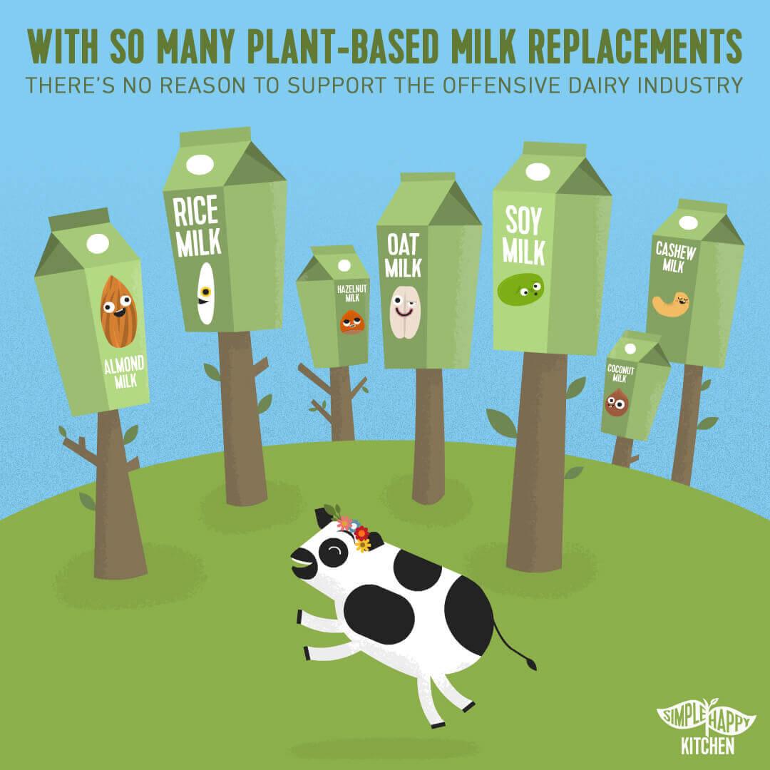All kinds of plant-based milks