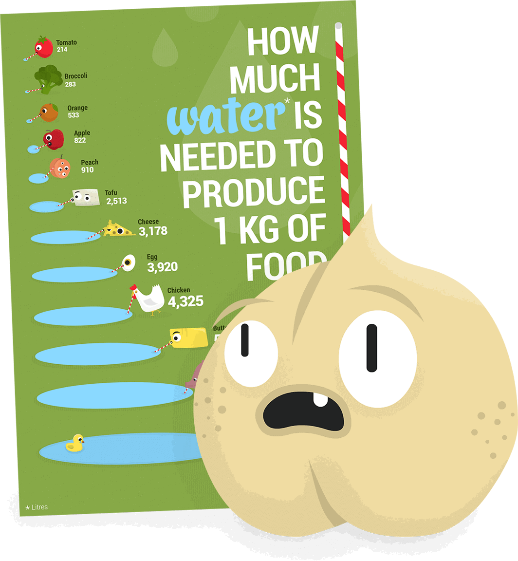 Chickpea looking at an environmental poster