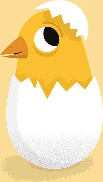 Cute chick inside an egg