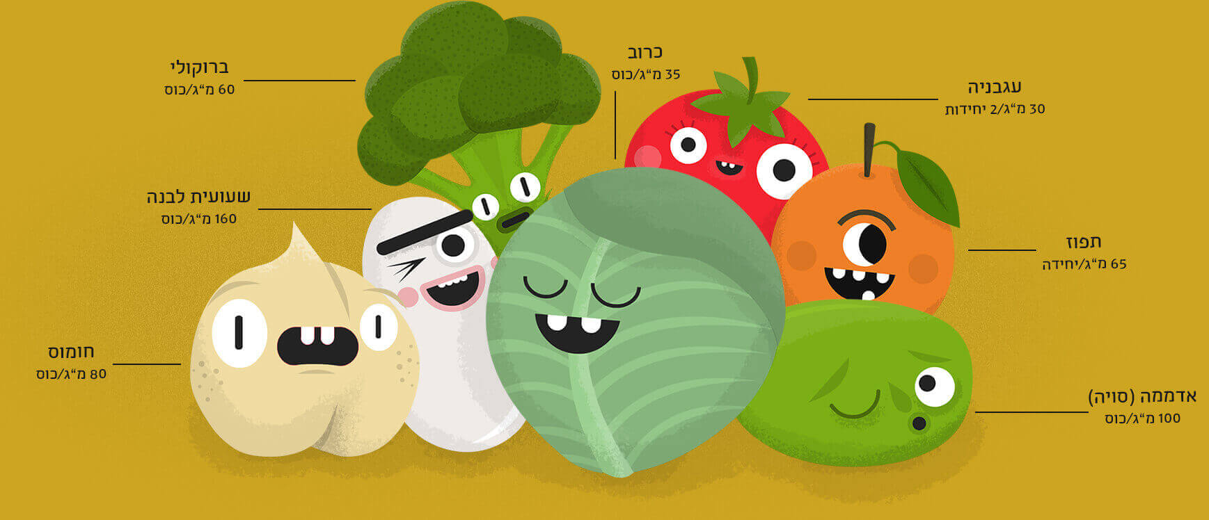A gang of plant-based calcium sources in Hebrew