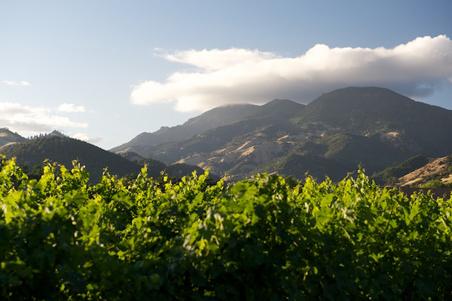 02-Summers-Mt-St-Helena.jpg (452×301)