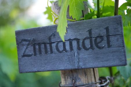 03-Zinfinadel-Sign.jpg (452×301)